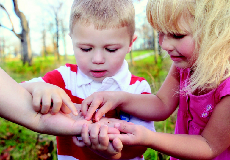 DIY Outdoor Activities for Preschoolers